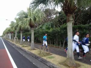 東京経済大学硬式野球部八丈島合同合宿